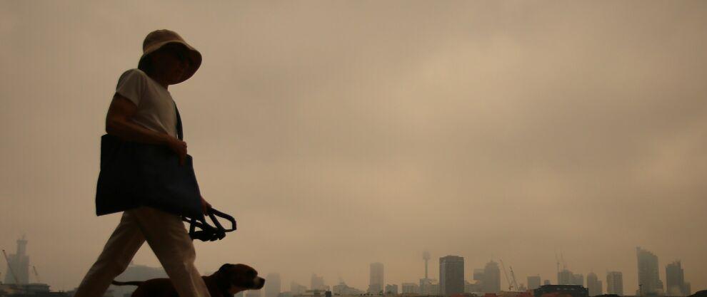 """Dym dusi Sydney. """"Takie warunki są zagrożeniem dla zdrowia"""""""