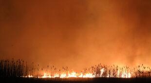 Rzecznik PSP o pożarze w Biebrzańskim Parku Narodowym