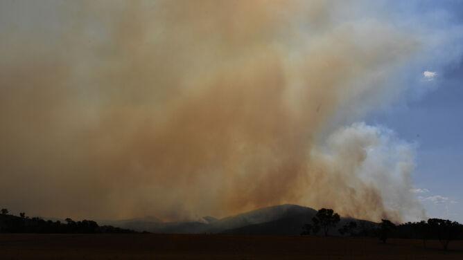 Trawa zapaliła się od lampy helikoptera. <br />W stolicy Australii i okolicach stan wyjątkowy