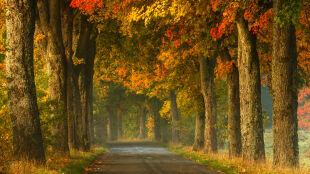 Nadeszła astronomiczna jesień